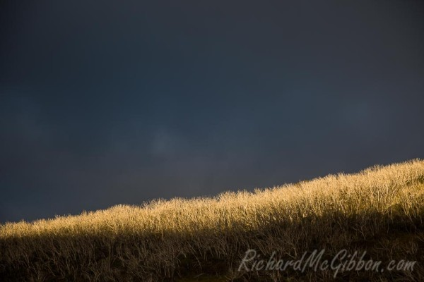 Last light at Dead Horse Gap, Snowy Mountains, Australia