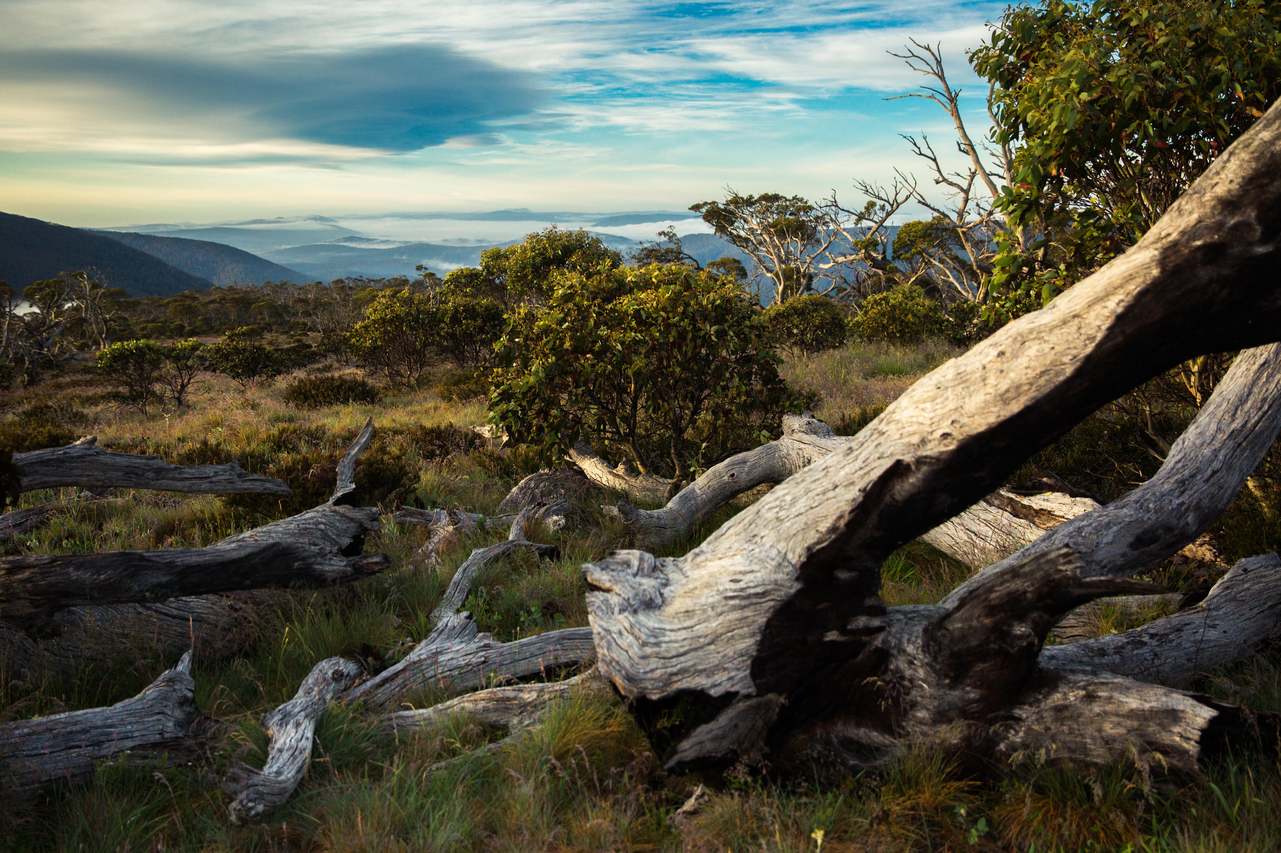 Stromlo National round and the Brindabella Range