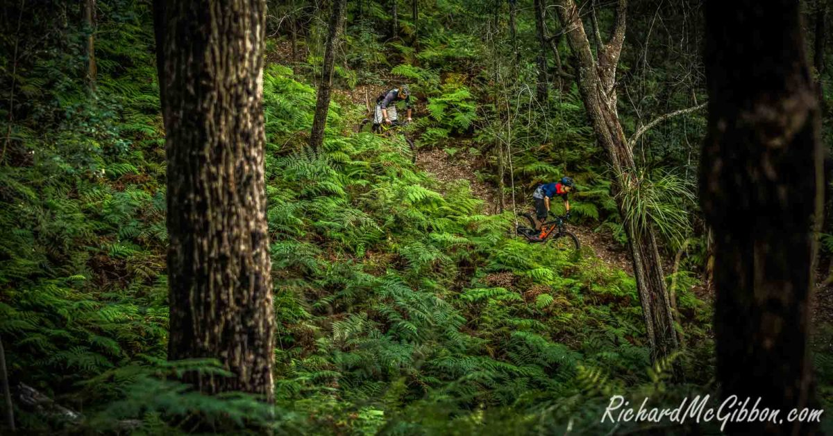 Through some of Trailshare's lush landscape