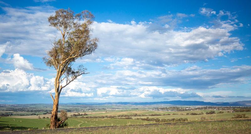 Scenic view to Bathurst